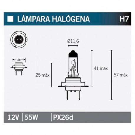 VICMA AMPOULE HALOGENE H7 PX26D