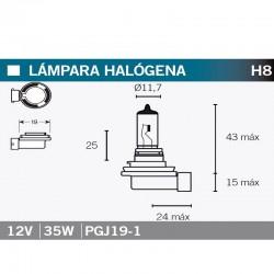 VICMA AMPOULE HALOGENE H8 PGJ19-1 - 999